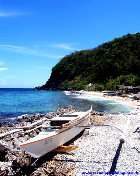 apo Island, fish sanctuary